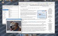 An elegant Linux desktop